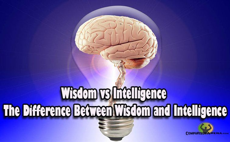Wisdom vs Intelligence