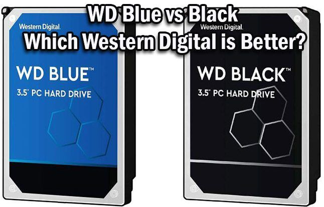 WD Blue vs Black
